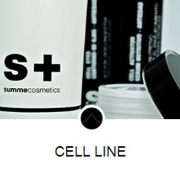 summe_cosmetics_cell_line